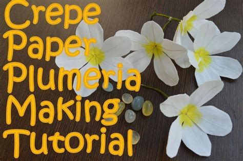 Crepe Paper Plumeria Flower Making   Tutorial   AV Visuals