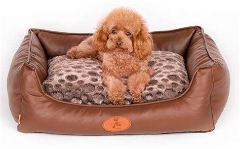 camas grandes para perros aimigou elegante grandes camas para perros mascotas camas