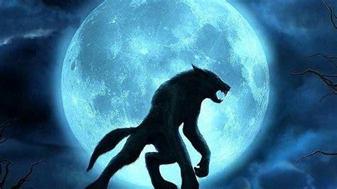 Loup Garou loups garous