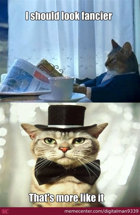 Fancy Cat Meme - that s one fancy cat by digitalman9339 meme center