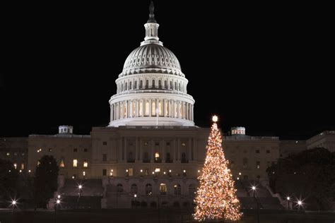 capitol christmas tree 2016 in washington dc