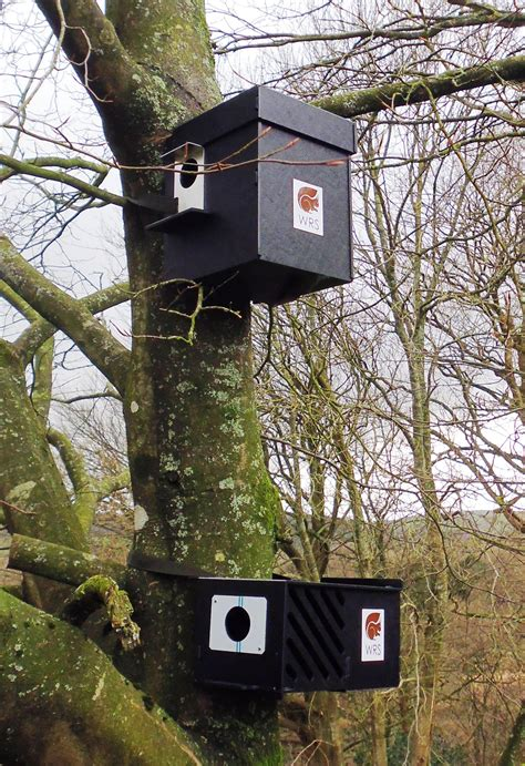 nest box squirrel only feeders and nestboxes for sale