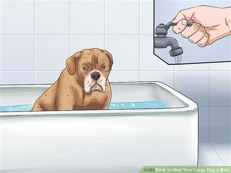 bathtubs for large dogs how to give your large dog a bath with pictures