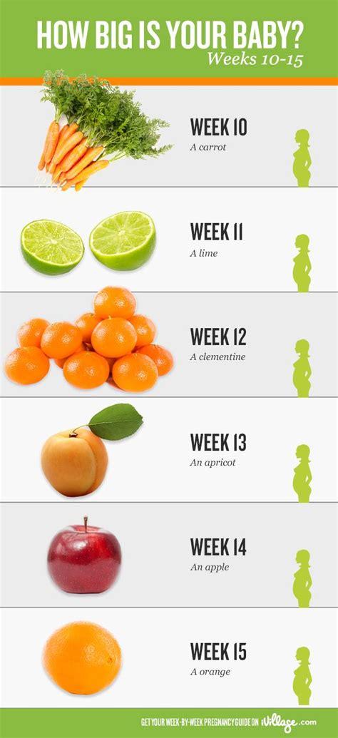 Pregnancy Calendar Week By Week Pregnancy Week By Week Calendar Info And Tools 2016
