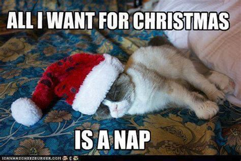 All I Want For Christmas Meme - 10 more hilarious holiday memes every student will