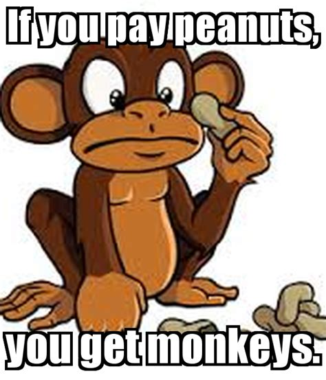 You Get if you pay peanuts you get monkeys poster