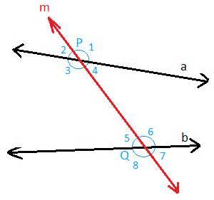 Alternate Interior Angles Postulate Transversal Lines Transversal Lines And Angles Math