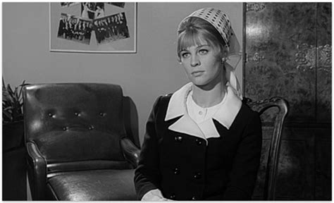biography of film darling darling 1965 making nice in the midwest