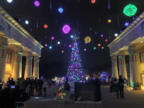 christmas lights memphis tn 12 of the best christmas light displays in tennessee in 2016