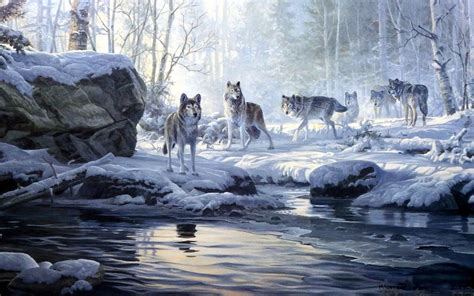 imagenes invierno winter forest wolves creek wallpapers winter forest