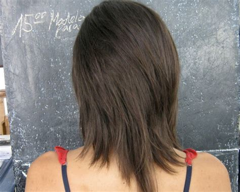 medium hair styles with layers back view medium layered hair back view www pixshark com images