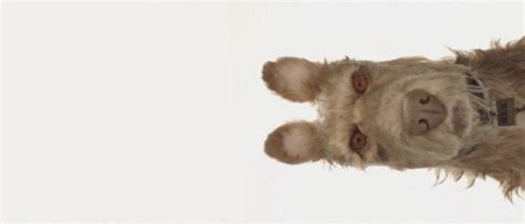 isle of dogs release date trailer release dates
