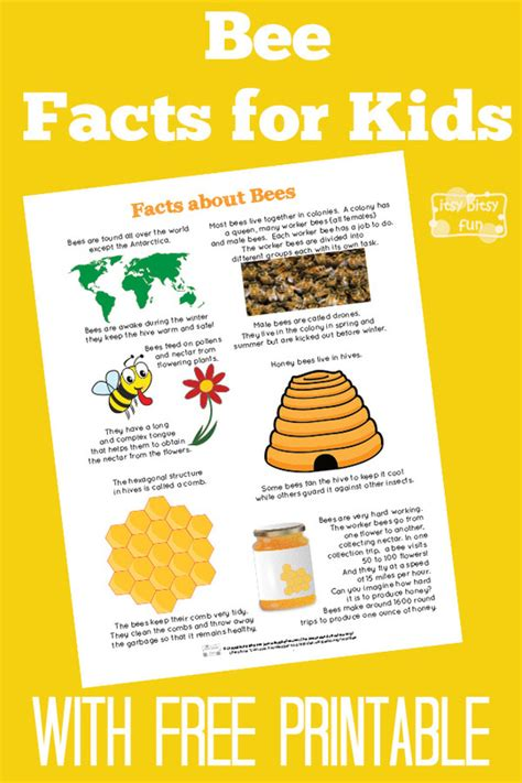 bee facts for bee facts free printables and bees