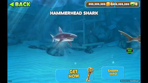 apk hungry shark hungry shark evolution unlimited money and gems apk android shark