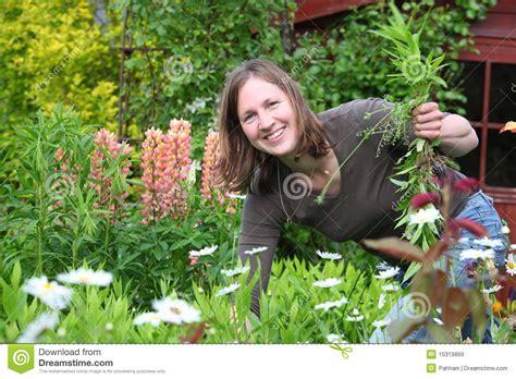 Frau Arbeitet Im Garten Stockbild Bild Frau Grow