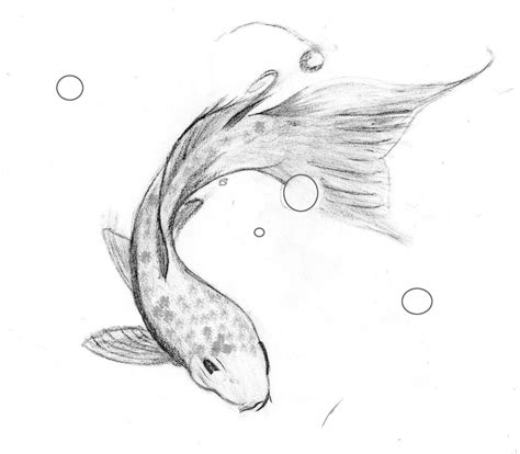 Drawing Koi Fish by Koi Fish Drawing Step By Step Search
