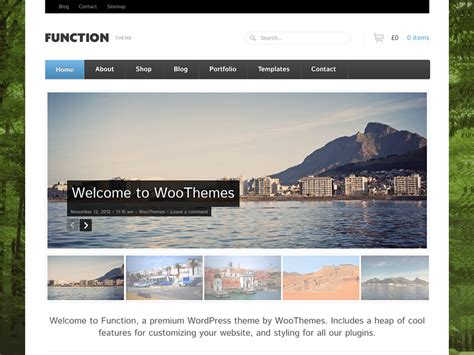 design by woo themes function woothemes