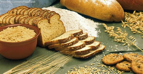 whole grains vs multigrain whole grain vs multigrain what s the difference 12