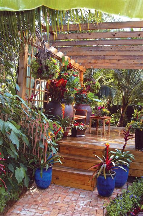 container gardens for florida 10 ideas about tropical landscaping on