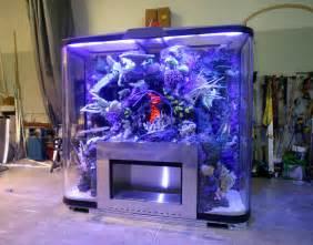 Aquarium Designs aquarium design and engineering