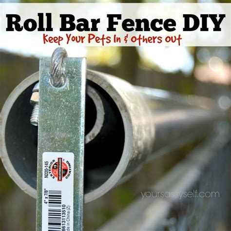 how to keep your cat in the backyard 25 best ideas about cat fence on pinterest top cats