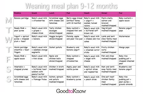 printable meal planner for baby collection meal plan for 9 month old photos daily