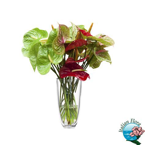 fiori secchi vendita on line fiori secchi vendita fiori secchi vendita