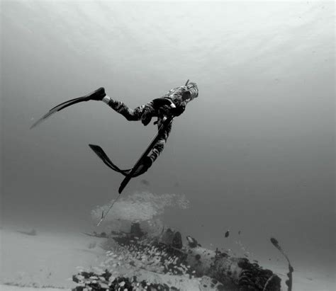 More On Spearss Adventure by Spearfishing Spearfishing Spear Fishing