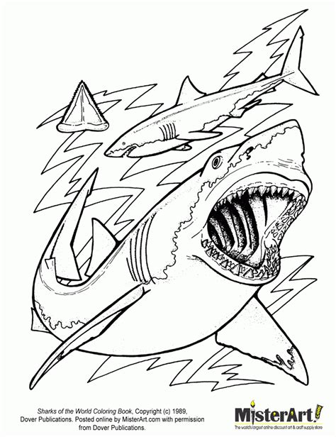 coloring pages info tag printable shark coloring pictures printable