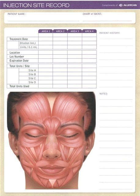 Allergan Injection Site Record Botox Treatment Record Template