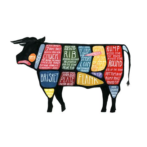 cow diagram butcher diagram beef detailed cuts of beef poster quot use