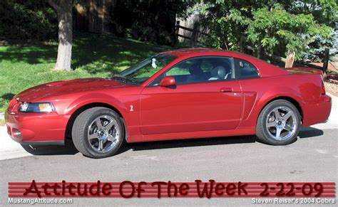 2004 mustang colors 2004 ford mustang paint colors