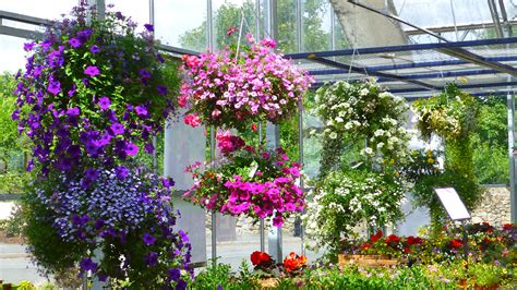 Gardens Nursery by Hotel R Best Hotel Deal Site