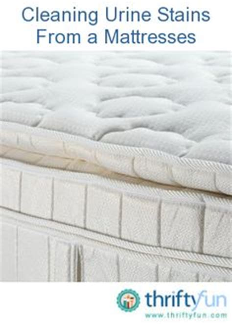 How Do You Clean Urine Stains From A Mattress by How To Remove Stains And Odors On How To