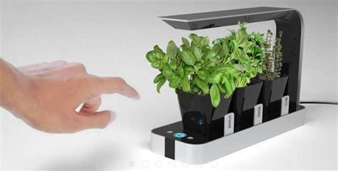 hydroponic indoor herb garden hi tech countertop planters bb little garden