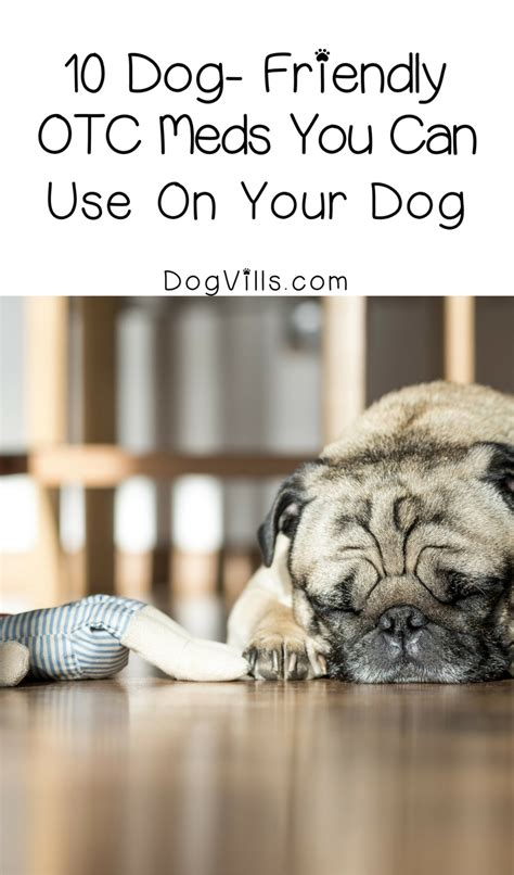 what meds are safe for dogs otc medications you can use for your dogvills