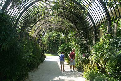 mckee botanical gardens vero 20 best vero fl family attractions tips before you