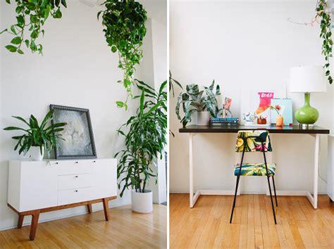 plante de chambre plantes d int 233 rieur le bonheur est dans la maison
