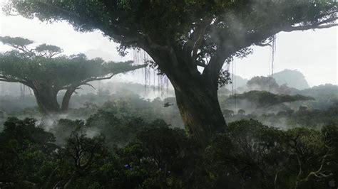imelda mcconnell rainforest wallpaper