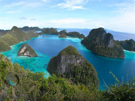 Raja Ampat : Exotica Beauty Of The Underwater ~ Travel and