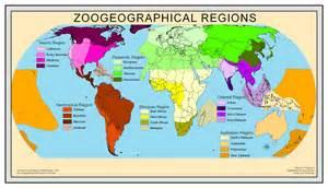 opinions on ecozone