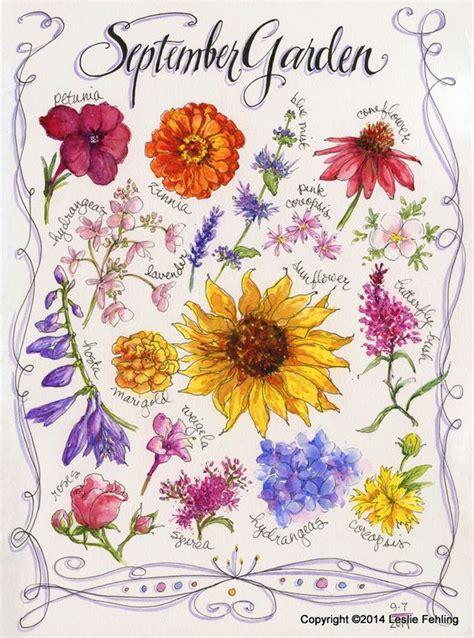 fiori ci sono a settembre i fiori di settembre e ottobre fioraio nettuno roma