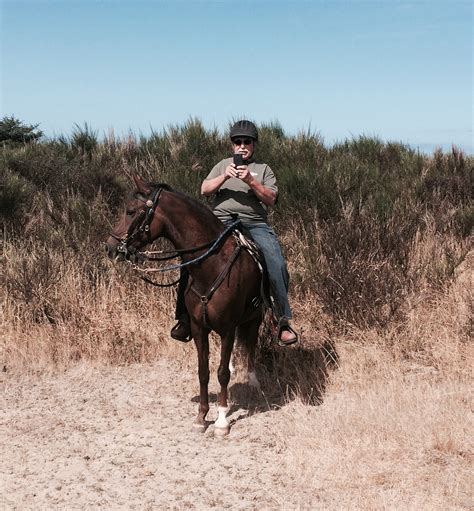 southern comfort gaited horse club our adventures northwest paso fino horse association