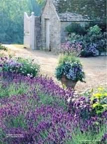 lavender garden cottage cool gardens