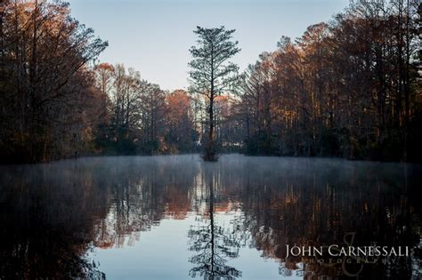 paddle boats greenfield lake 8 best nature landscape images on pinterest wilmington