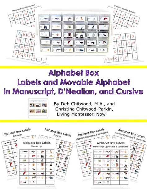 printable moveable alphabet free diy alphabet box multi level printables and resources