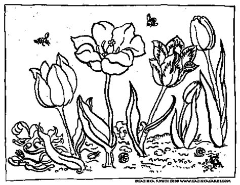 c knotes drawing of spring flowers