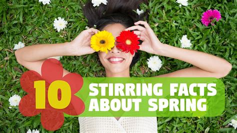 what is a spring 10 stirring facts about spring youtube