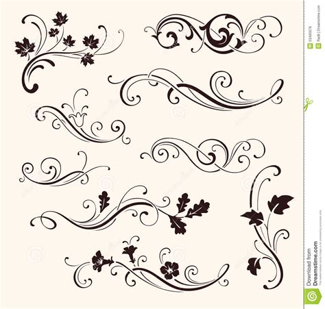 set of calligraphic floral elements vector decorative