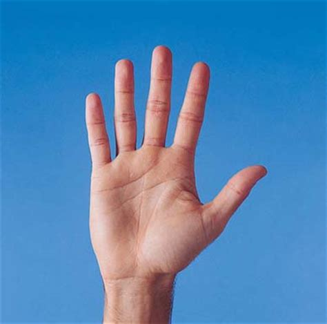 tips merawat kelembutan kulit telapak tangan